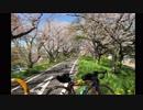 【ロードバイク車載】ゆかきりサイクリングpart6 白石峠 【115キロ】