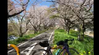 【ロードバイク車載】ゆかきりサイクリン