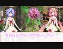 【劇場】4/18花屋鳴花【ムラサキツメクサ】