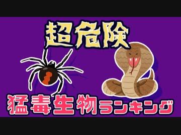 【ゆっくり解説】危険な猛毒を持つ生き物ランキング15選