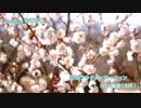 【VOCALOID 初音ミク】恋のフラグメンテーション【オリジナル】