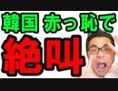 【韓国】日本の政府が韓国文在寅の特使を拒否!色々な意味で情けないと世界に赤っ恥を晒す!韓国終わったな…海外の反応 最新 ニュース速報『KAZUMA Channel』