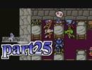 【FF4】暗黒を纏う戦士が光を求める物語【実況】 part25