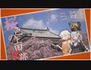 【きずおね旅】美ら路5冊目 - 桜色の上田城跡