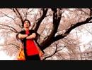 【栗原市の桜の下で】千本桜 踊ってみた【時空戦士ヒート】