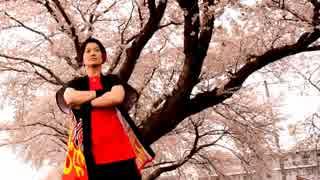 【栗原市の桜の下で】千本桜 踊ってみた【