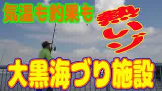 釣り動画ロマンを求めて 247釣目(大黒海