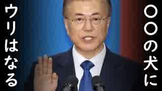 「金正恩が最も恐れる、米国、中国が最も信頼する大統領になる!」文在寅の2年前の言葉に腹筋崩壊!