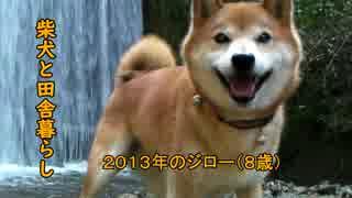 【柴犬ジロー】柴犬と田舎暮らし2【Shiba Inu】