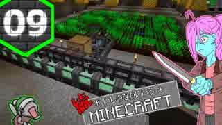【Minecraft 1.12】続*いしのなかにいる*Minecraft Part.09【StoneBlock2】