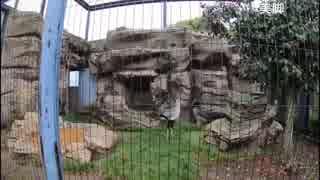 ~みんなで東武動物公園に遊び行くぞSP~