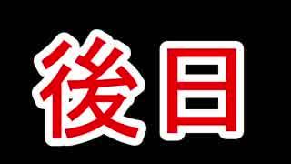 ゼルダの伝説 ブレスオブザワイルド 字幕