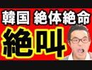 【韓国】速報!令和のカウントダウンと天皇陛下の即位で韓国が日本に早速すり寄って来たぞ!日韓関係リセットか…海外の反応 最新 ニュース『KAZUMA Channel』