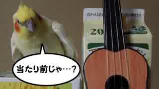 ギターを演奏しないインコ