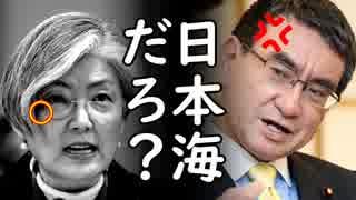 韓国が米NY国連本部で日本に再び耳を疑う主張を展開し世界中に嘘を拡散しようと必死過ぎて草