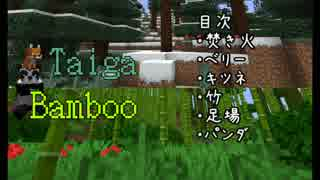 【Minecraft Java Edition】Village and P