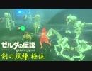 【実況】新たな冒険へ!ゼルダの伝説 ブレスオブザワイルド 剣の試練リベンジ【極位後編】
