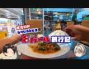 【ゆっくり】旅動画「ネパール編」第3話【aquabugの旅動画】