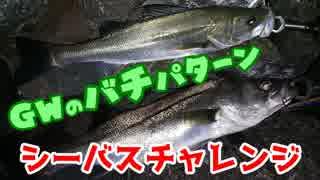 【湾奥釣行記】シーバスチャレンジ Ver.19.05.02_京浜島緑道公園