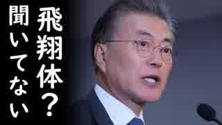 文在寅が北朝鮮金正恩が日本に向けてミサイル発射した事を完全に無かった事にしてるぞ!