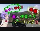 【音街ウナ車載】雨男のバイク旅【春の伊豆スカツーリング!!後編】