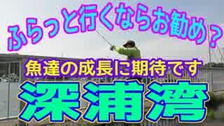 釣り動画ロマンを求めて 251釣目(深浦湾)