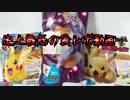 ポケモンパン~史上最低の食レポ動画…~