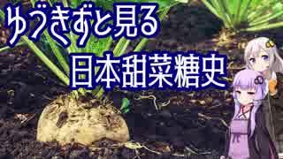 【砂糖の歴史】ゆづきずとみる日本甜菜糖