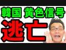 【韓国】最新 ニュース速報!日本に日韓関係改善を要求する韓国はウソだらけ!経済通貨危機には目を向けずパニック状態…海外の反応『KAZUMA Channel』