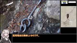 【RTA】ポケモンGO 石鎚山(天狗岳)攻略