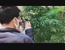 大物YouTuber 横浜を訪れる