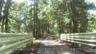 陸前落合駅から大国神社サイクリング(田舎道ほのぼのゆるり)
