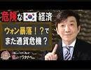【教えて!ワタナベさん】韓国経済、輸出激減でウォン暴落!?日本はまた助けるの?[桜R1/5/18]