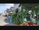 日本最強の『アニマルごみ屋敷』
