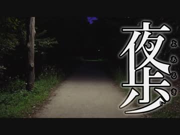 【夜歩き】大手町~葛西臨海公園