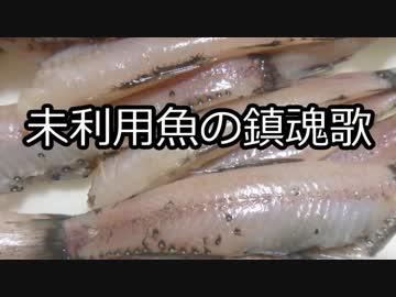 【珍魚】未利用魚の鎮魂歌【オリジナル曲】