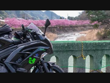 Luxury Rider 102  伊豆の桜とメシテロツーリング