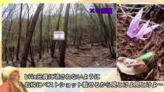 【ゆっくり】奥多摩御前山攻略RTA 3時間09分