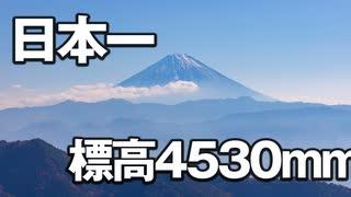 "【RTA】大阪府 天保山攻略 非公認記録 08""14"