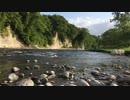 【癒しの音と映像】川のせせらぎ