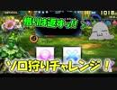 【QMAXV】ミューと協力賢者を目指す ~24限目~【kohnataシリーズ】