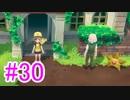 【ピカブイ】ポケモンの世界を大冒険☆パート30【実況】