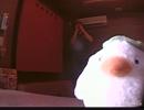 狂乱Hey Kids!!/THE ORAL CIGARETTES