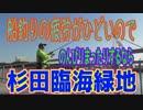 釣り動画ロマンを求めて 256釣目(杉田臨海緑地)