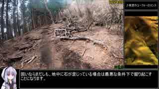 シダンゴ山RTA (00:35:04)