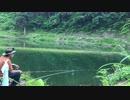【のべ竿で鯉】廃トンネルと色鯉