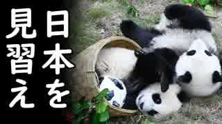 韓国のサッカーU18代表侮辱行為に怒りが収まらぬ中国が韓国へ復讐を誓う!宗主国様激オコ、文在寅これどうすんの?