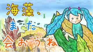 海藻、また会おうね / 初音ミク