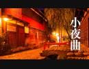 小夜曲【癒しBGM】美しく切ない、ノスタルジックな音楽