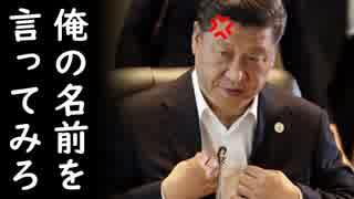 韓国が日米中朝から報復を宣言され四面楚歌に陥る中、習近平国家主席が自ら朝鮮人の躾方のお手本を見せてくれるそうで胸熱w